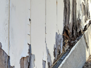 5 Places Rotting Wood May Be Hiding in Your Home